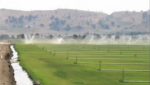 Central Valley groundwater study