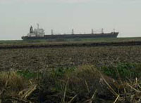 A ship on the San Joaquin River passes high above heavily subsided Twitchell Island.