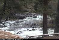 USGS, California Water Science Center, Merced River at Happy Isles near Yosemite Webcam